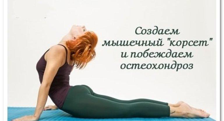 Какие упражнения выполнять при остеохондрозе позвоночника?