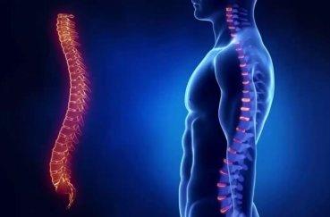 Лечение остеохондроза ортопедическими средствами
