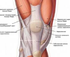 Варикоз под коленом симптомы причины лечение