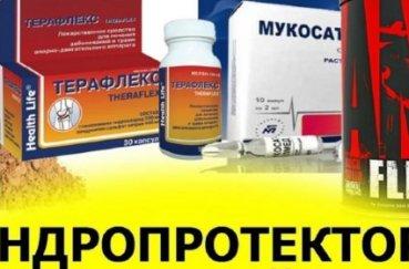 Лучшие хондропротекторы для лечения артроза