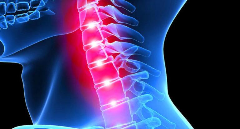 Как проходит восстановление спинного мозга после травм?