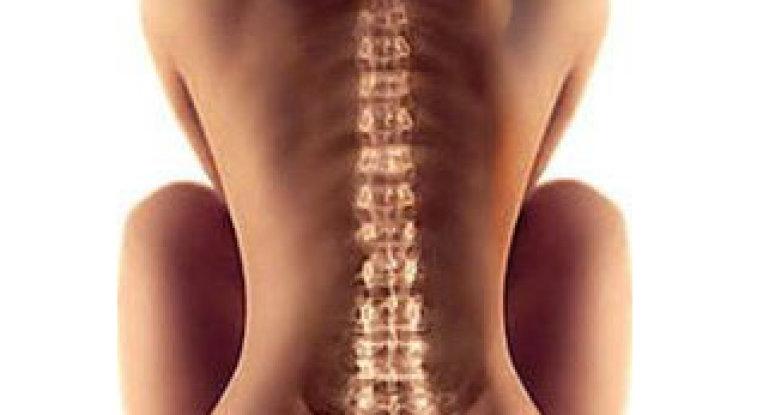 Открываем секреты здорового позвоночника и суставов