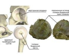 Вид здоровых и поврежденных головок