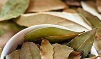 Как лечить болезни суставов лавровым листом…