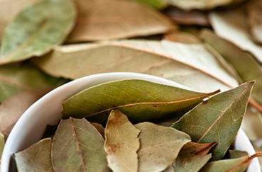 Как лечить болезни суставов лавровым листом