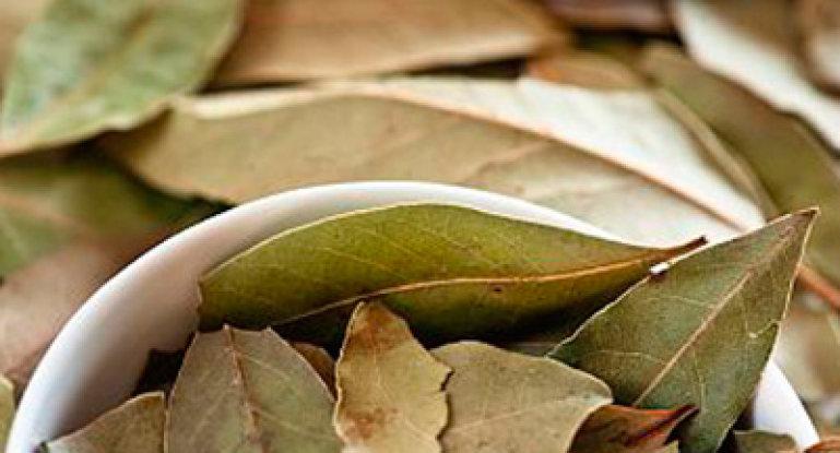 Как лечить болезни суставов лавровым листом — лучшие рецепты