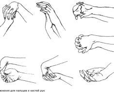 Разработка кисти рук