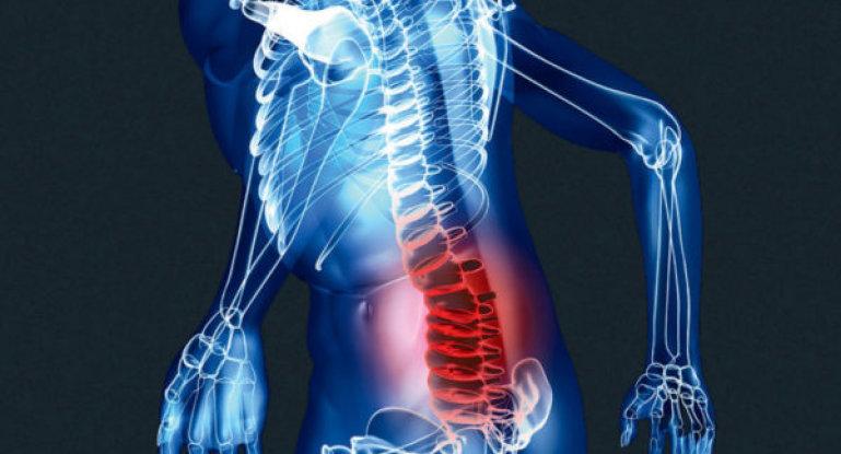 Мышцы спины поясничного отдела анатомия
