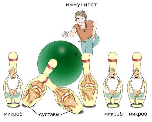 Иммунитет против суставов