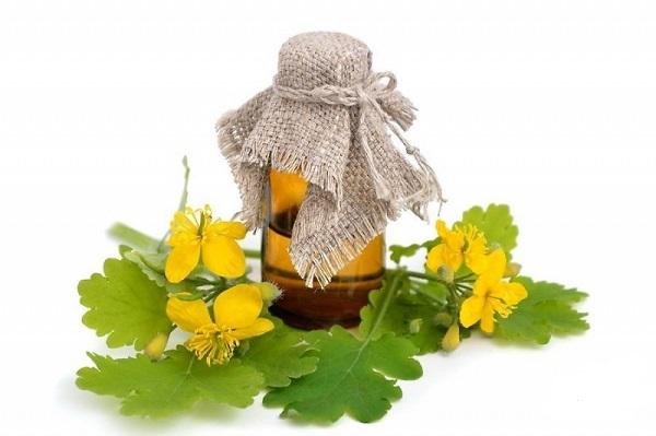 Масло чистотела для лечения