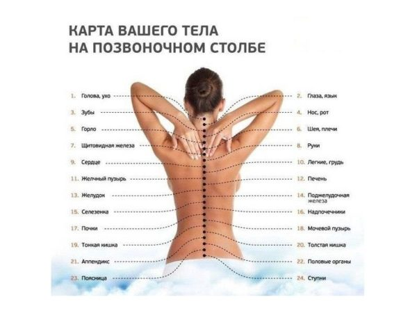 Изображение карты тела