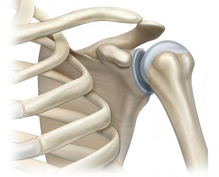 Изображение - Крем от боли в плечевом суставе 3-4